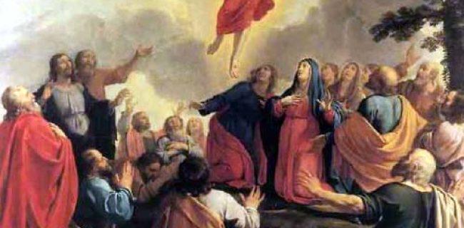 Ascensione: Gesù dopo aver parlato fu elevato in cielo